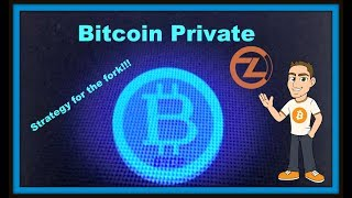 Bitcoin Private BTCP - ZCL / Bitcoin Fork - Strategy to Make the Most Money with Fork