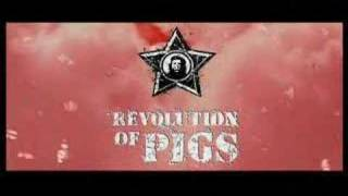 What you know about Estonia? Revolution of Pigs Film Trailer