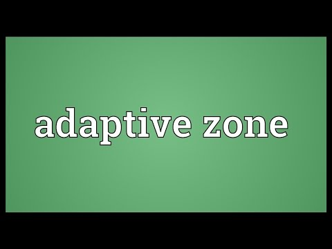 Adaptive zone Meaning