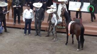 Campeonato Charro Nacional 2018