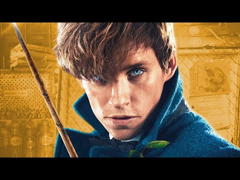 The History Of Newt Scamander | Fantastic Beasts