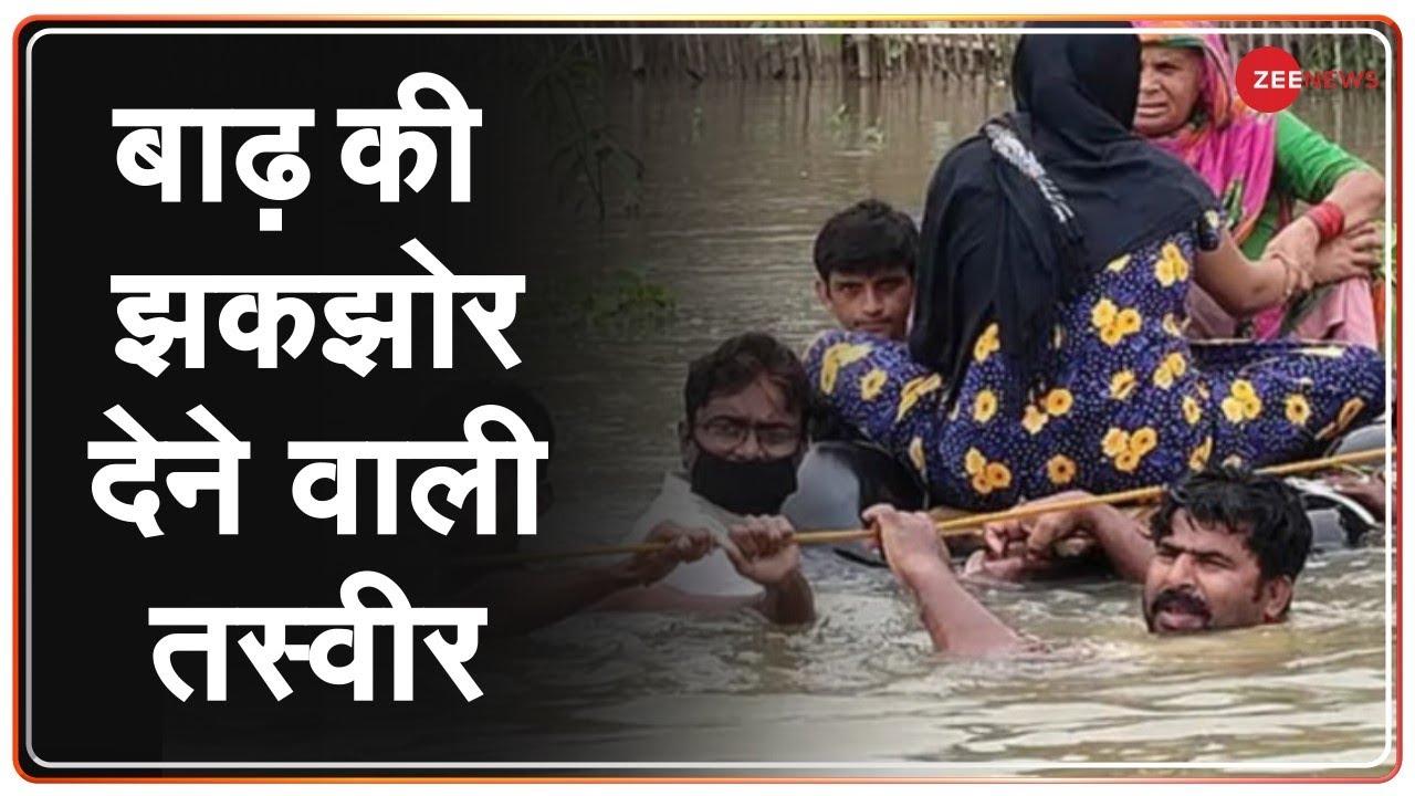 Download Zee Ground Report: Bihar के शहर,जिले-गांव में पानी ही पानी, बाढ़ ने मचाई तबाही । Bihar Flood Updates