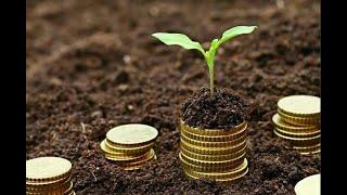 Садовый бизнес. ч.1. Как заработать деньги на своей земле