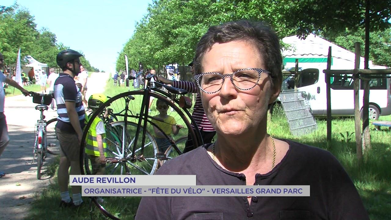 Yvelines | Versailles Grand parc: L'agglomération fête le vélo