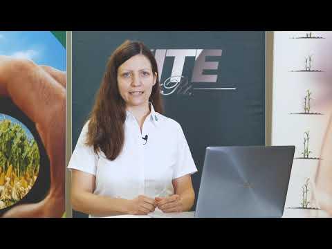 Nagyító alatt a KITE tavaszi tápanyag-utánpótlási rendszere