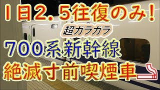 【絶滅寸前!700系新幹線喫煙車】1日2.5往復限定の喫煙グリーン車に乗ってみた(東京→豊橋)