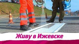 Живу в Ижевске 15.04.2019