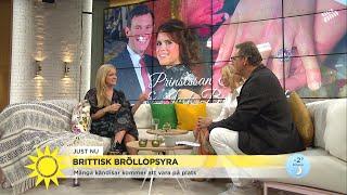 """Kändistätt på brittiskt kungabröllop: """"Han är en välpolerad och ordentlig kille - Nyhetsmorgon (TV4)"""
