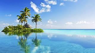 Картинка лето. Пальмы, отражение, вода, отблеск.