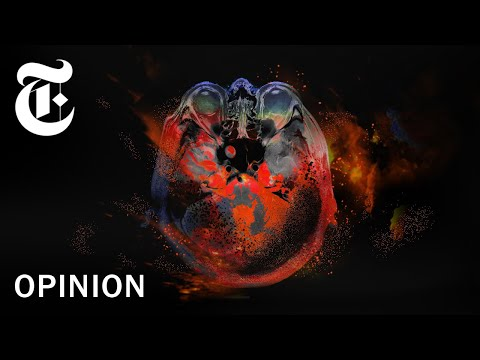 Trump and Putin: A Love Story | NYT Opinion - Trump Bites from YouTube · Duration:  1 minutes 12 seconds