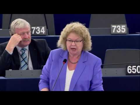 European Asylum System reform - Jean Lambert