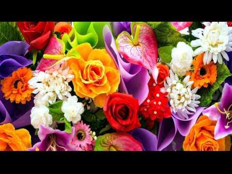 Bouquet   Mixed Flowers & Bouquets Ideas