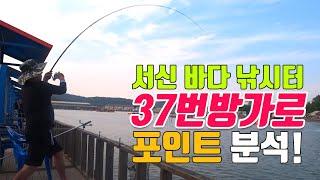 유터 포인트 공략기 1탄 - 서신 바다 낚시터 37번 …