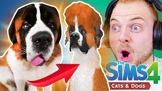 CREATING MY SAINT BERNARD in The Sims 4 - Cats & Dogs!! thumbnail