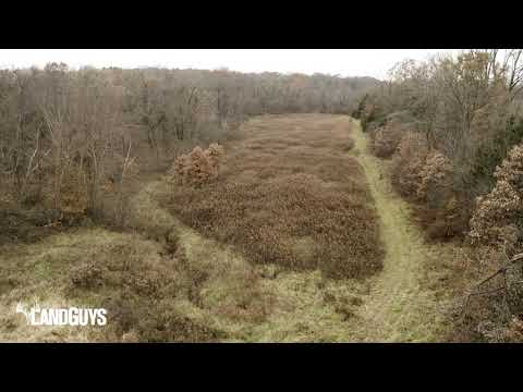 Incredible Deer Habitat On This Property For Sale (Hancock County, IL 162 Acres)
