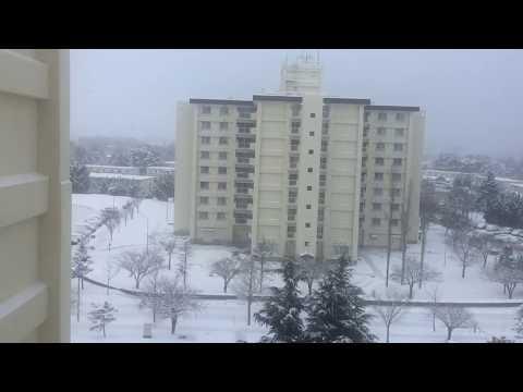 Misawa Japan, AF North Base Housing Snowing