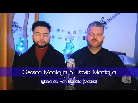 Gerson Montoya Y David Montoya