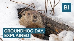 Why Groundhogs Supposedly Predict The Weather On Groundhog Day