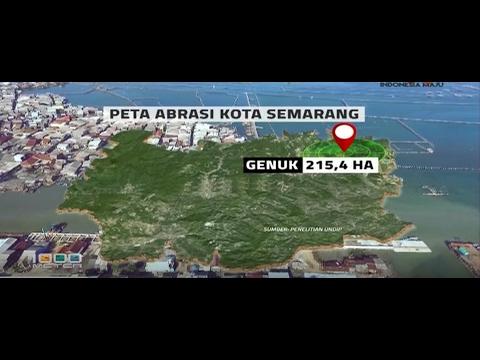 Mangrove Pantai di Semarang Penangkal Abrasi Part 2 Mp3