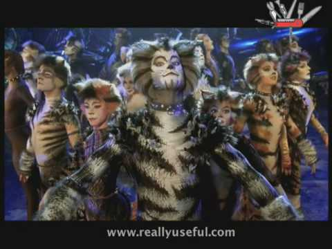 The invitation to the jellicle ball youtube stopboris Image collections