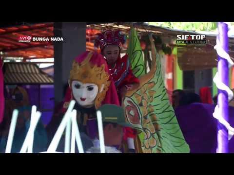 Live Bunga Nada - Singa Dangdut   Kubangwungu Ketanggungan Brebes   24 Agustus 2019