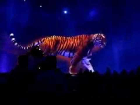 Blue Beam Hologram Tiger