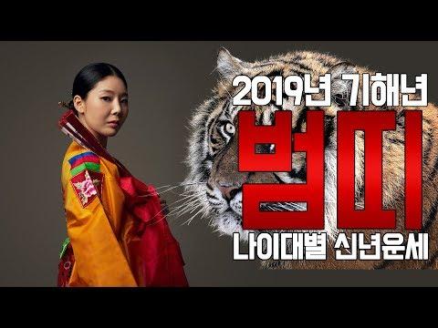 2019년 기해년 범띠!! 나이대별 신년운세를 알아보자