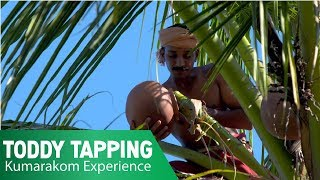 Toddy Tapping | Kumarakom Experience