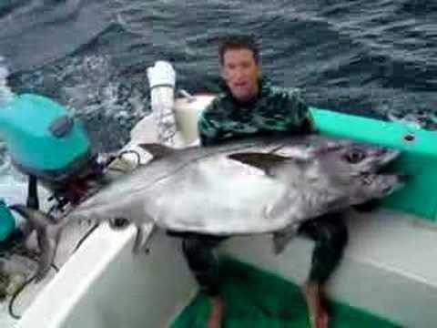 Dogtooth Tuna Spearfishing World Record