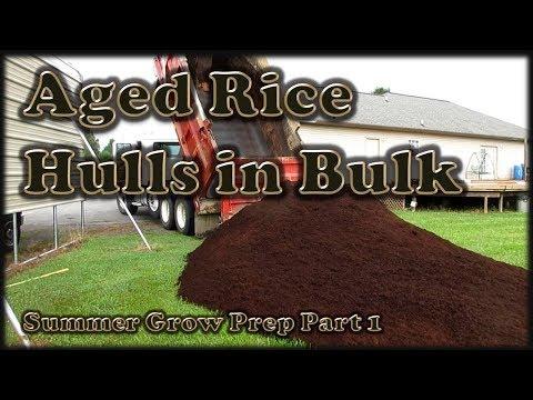 aged-rice-hulls:-my-hydroponic-medium
