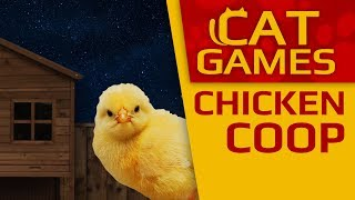 CAT GAMES - 🐤 Chicken Coop (VIDEOS FOR CATS TO WATCH) 4K 60FPS