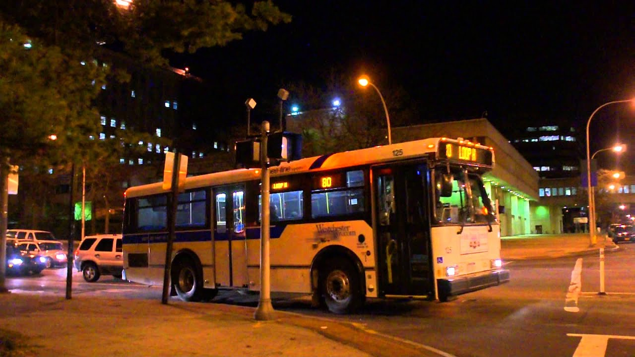 The Bee-Line System 2005 30ft Orion V 125 & 2001 Neoplan