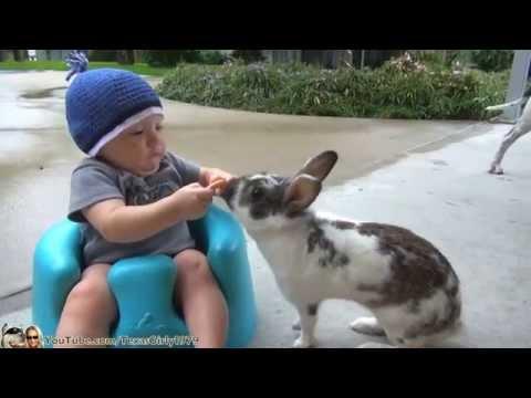 BUNNY, BABY AND #PITBULL … Happy Easter   TexasGirly1979