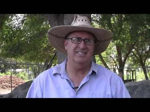 Organic Farming in California's Central Valley - John Teixeira