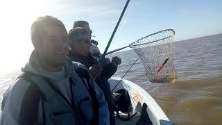 Pesca de matungos Rio de la Plata Berisso 2018