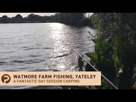 Beginners Carp Fishing At Watmore Farm Carp Fishery, Yateley