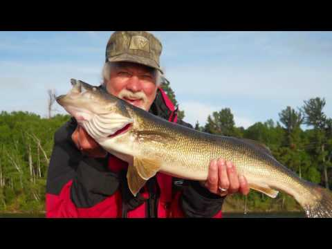 The Crazy Life Of Clark's | Canadian Fishing Trips