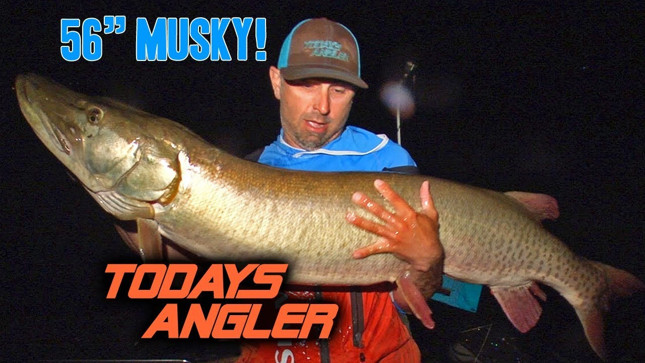 Giant 56 inch musky ft jon b and chris bulaw jon b for Jon b fishing