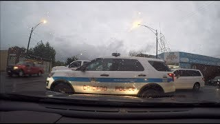 Bad Drivers of Chicago #26