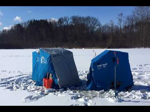 Up North Journal - First Ice Fishing of the Season, Part 2 of 2017 Wrap Up, TB Positive Deer
