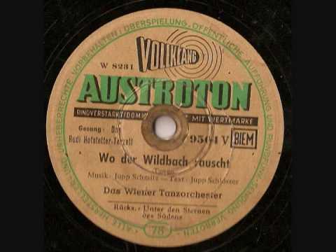 Ernie Bieler Rudi HofstetterWo der Wildbach rauscht filmwmv