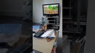 2eme partie de Mario Kart 8 Deluxe de maman