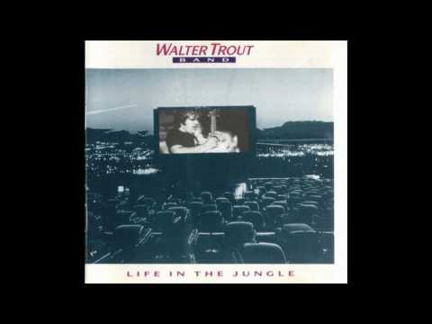 Walter Trout Band - Life In The Jungle (live)