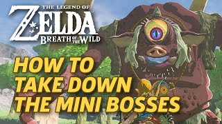 How to Defeat Breath of the Wild's Mini-Bosses