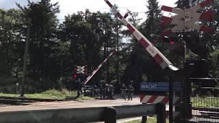 Dutch Railroad Crossing/Spoorwegovergang (Kootwijk)  Pintu Perlintasan Kereta Belanda