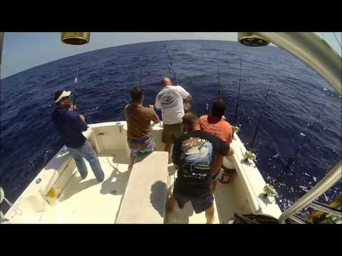 2014 Offshore Season Recap
