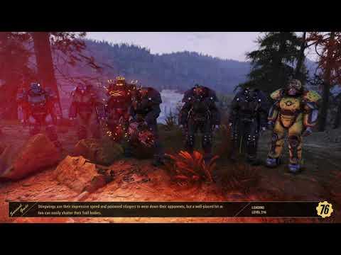 Enclave order 77 killing scammers |