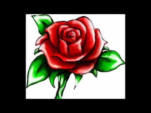 How To Draw A Rose In Less Than 60 Seconds Step By Step Easy With