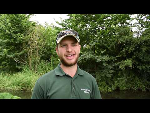 Wherwell Priory River Test Fishery Review