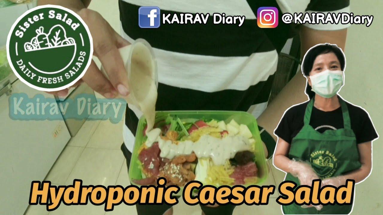 Download SISTER SALAD Surabaya | Salad Rumahan dengan Sayur Hidroponik dari Kebun Sendiri!! | Sesame Teriyaki